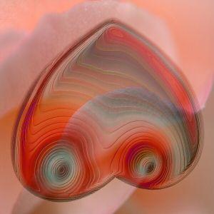 Heart Odors, Part III